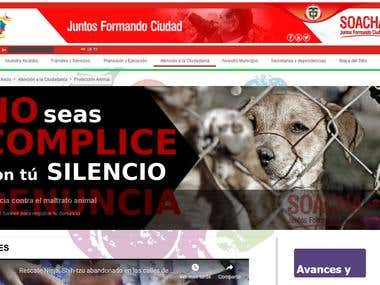 Modulo proteccion animal web Alcaldia de Soacha Colombia