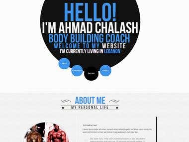 Portfolio Website One page