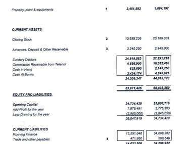 Balance Sheet & Profit & Loss Reports