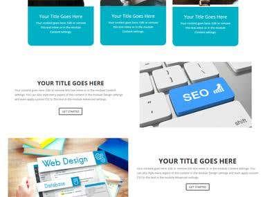 WordPress Website Customization
