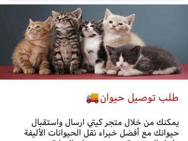 kittyStore