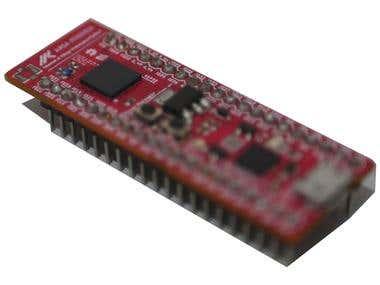 ESP32 Development Board