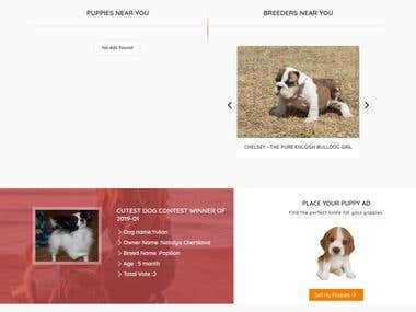 Pawbe - WordPress - Directory Website