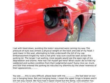 Automobile Article