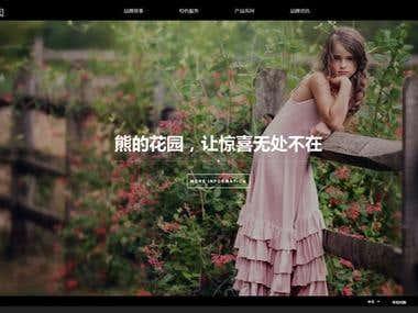 High-end Website Design/Develop