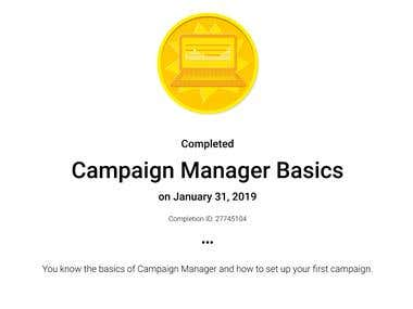 Campaign Manager Basics