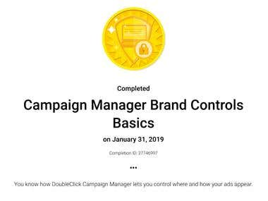 Campaign Manager Brand Controls Basics