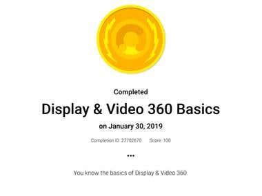 Display & Video 360 Basics