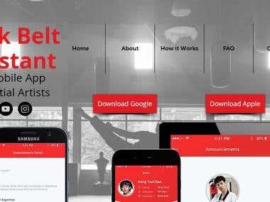 Black Belt Assistant - Web