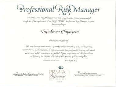 Professional Risk Manager designation