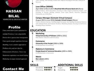 Resume Writer (Decent & Simple