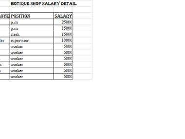 BOTIQUE SALARY DETAIL