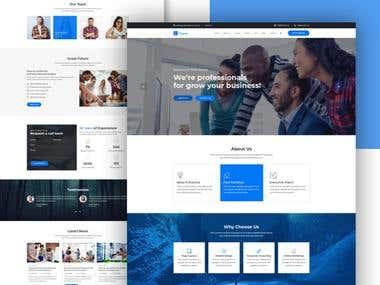 Finance Website Development
