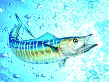 Picture designed of a wahoo fish in the ocean.