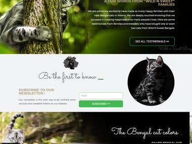 Website for displaying and selling Bengal Kitten