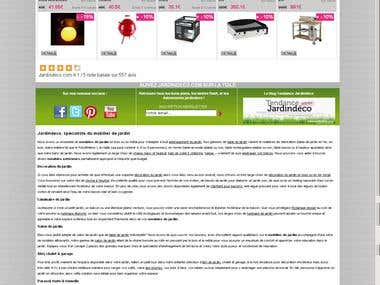 French SEO & Ecommerce SEO