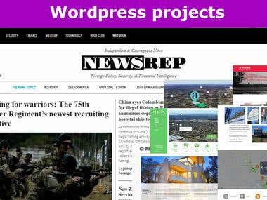 Worpdress projects: themes, plugins