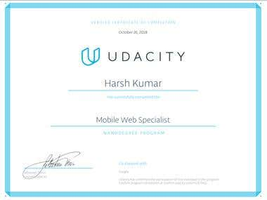 MOBILE WEB SPECIALIST