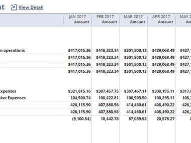 Bookkeeping-Oracle (NetSuite)