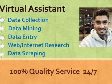 Virtual Assistant (Data Entry)