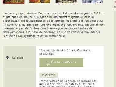 English into French translation (website)