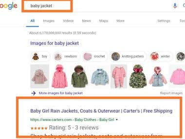Seo expert of carters
