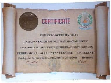 professional accountant course
