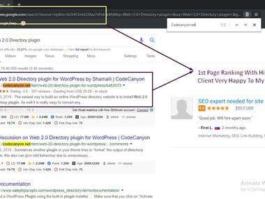 1st Page Ranking with high traffic