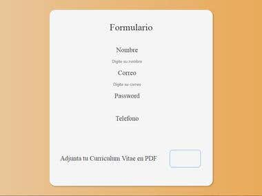 HTML / CSS form