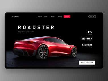 Tesla Roadster Website Concept