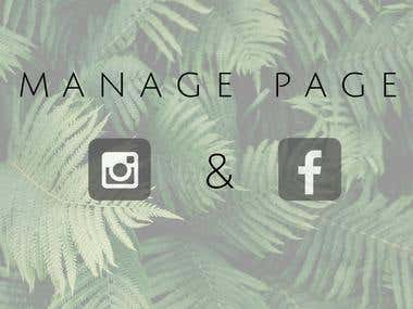 Facebook and Instagram Page Manage