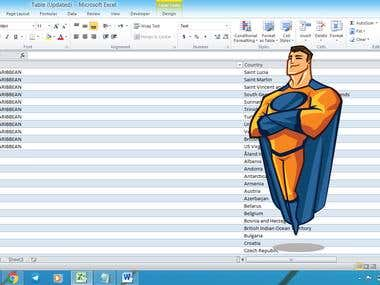 Data entry (Excel)