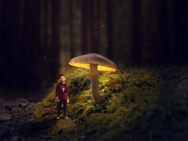 mushroom manipulation