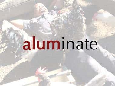 Aluminate