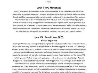 Digital Marketing Article