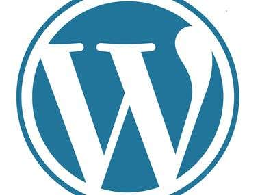 Wordpress Error Fix