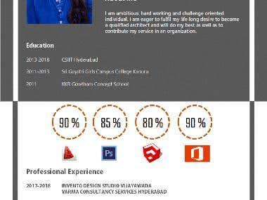 architectural resume and portfolio