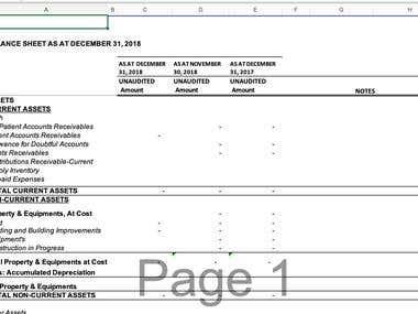 Financial Template and raio analysis