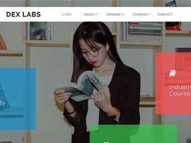 dexlabs.dhanaina.com