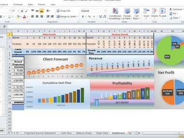 excel report and business plan
