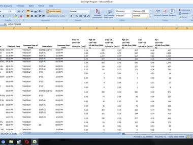 Data Entry & Web Research Project