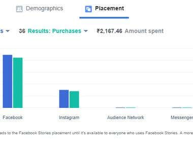 Facebook Ad Campaign Result