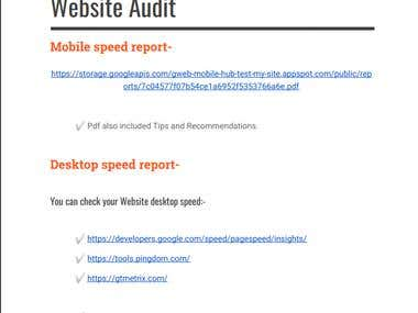 Website Full Audit Report