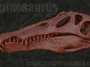 Spinosaurus Skull for 3D printing