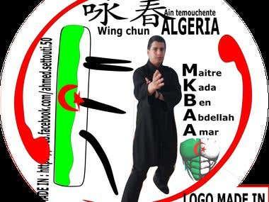 Logo - Kung Fu Sports Coach