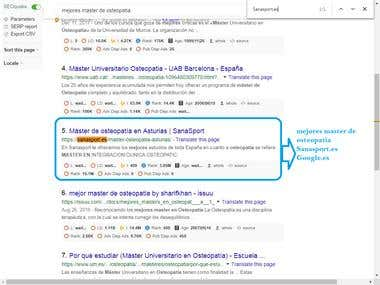Top 10 Rank Google.es