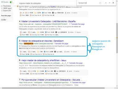 Top 10 Rank Google.es