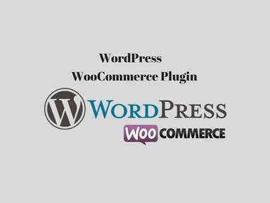 WordPress Woo-commerce Theme Development