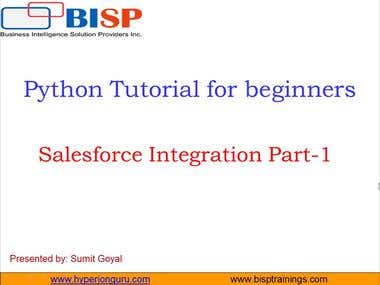 Salesforce Integration with Python