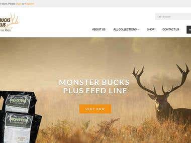Big Bucks Plus shopify eCommerce